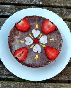 Raw cacao cake